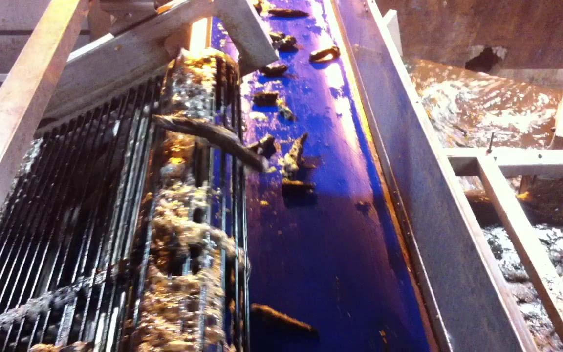 Floating Debris Remover