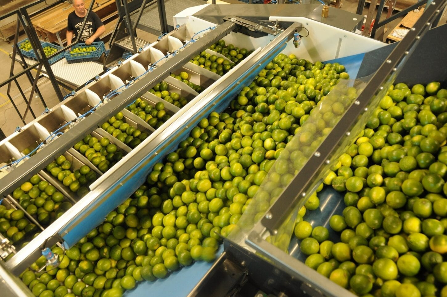 Choosing the right packaging equipment for your processing line