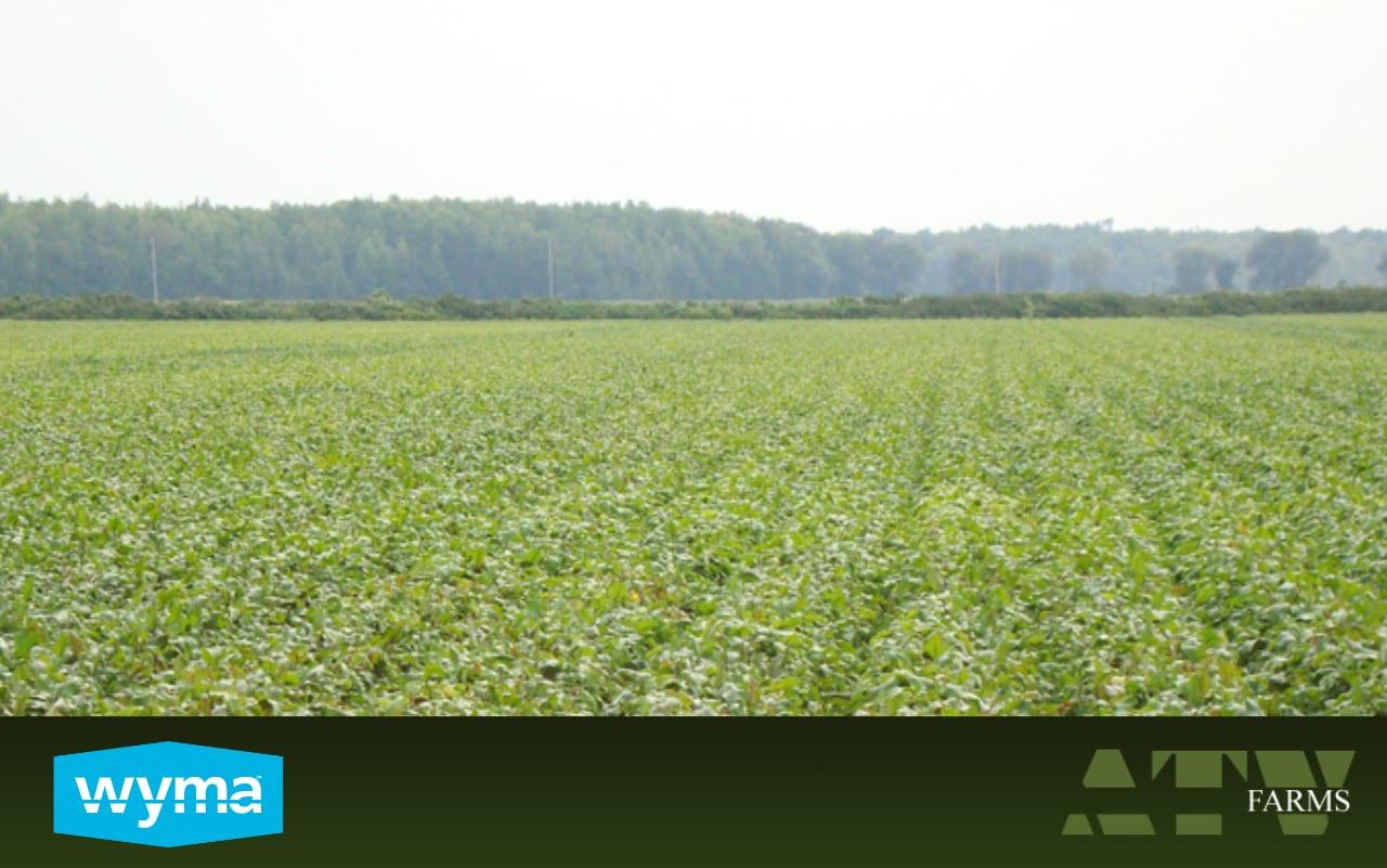 ATV Farms chooses Wyma
