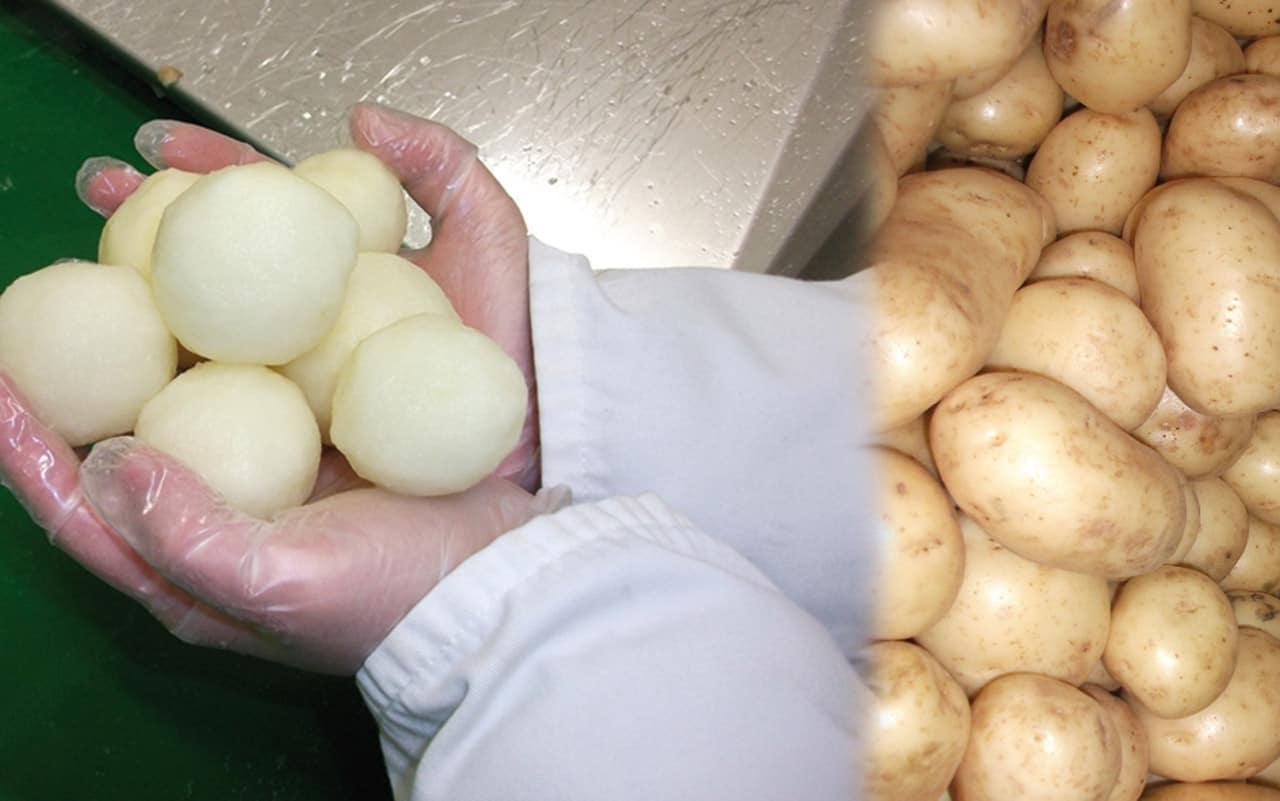 Peeled potatoes with Wyma Vege-Peeler-sq