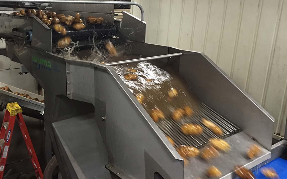 Flume Destoner potatoes