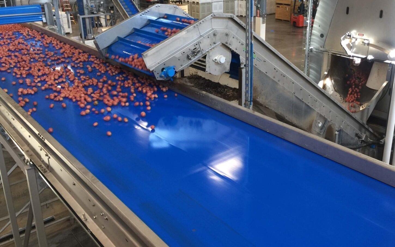 Octal Conveyors & Elevators