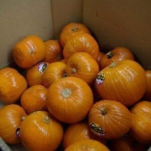 006-B-Pumpkin-Brusher-10-300x300