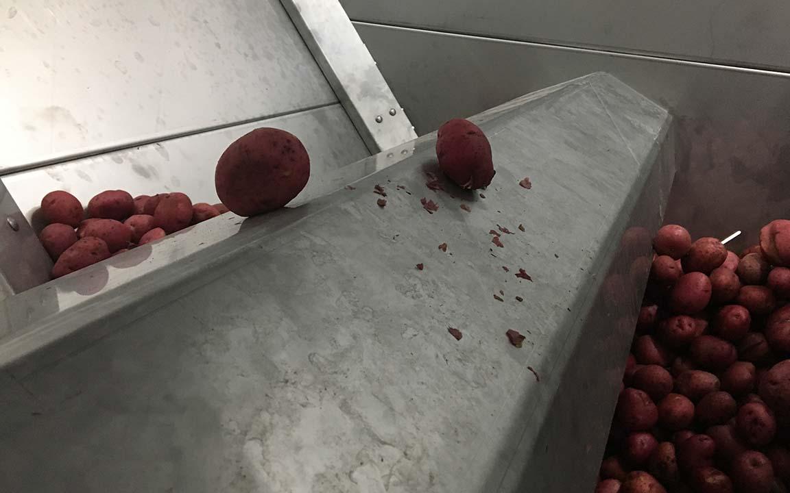 Storage bunkers for vegetables